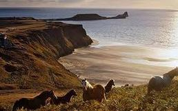 Visit the Gower Peninsula, Worms Head and the lovely Welsh Coast a short drive from Lothlorien Holiday Cottage in Wales